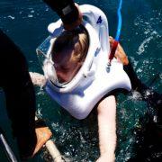 di bộ dưới biển 4