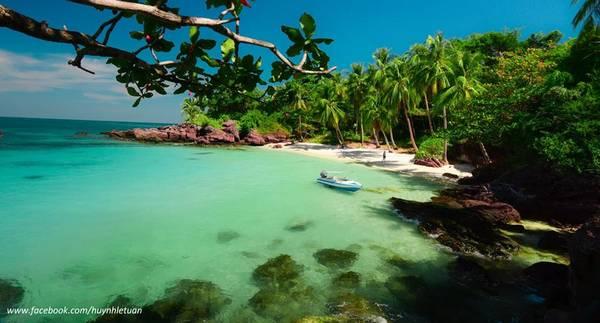 Hàng dừa xanh mát trên đảo Móng Tay.Ảnh: Huỳnh Lê Tuấn
