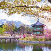 tour-han-quoc-5n4d-focusasia